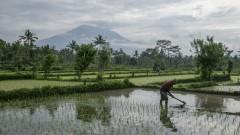 Повече от 35 000 евакуирани заради вулкана на о. Бали