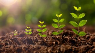 Мегасделка за $43 милиарда се задава в агробизнеса