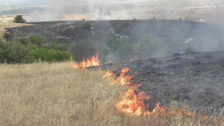Пожар край пътя София-Варна затруднява движението, съобщават от полицията. Сигнал