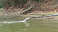 В Лом проверяват тръби, изливащи черна вода в Дунав