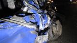 Тежка катастрофа по Е-79 между Видин и Монтана
