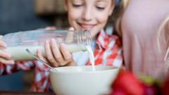 Защо точно сега е важно да ядем мляко и млечни продукти