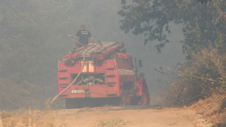 Нов пожар в Тополовградско