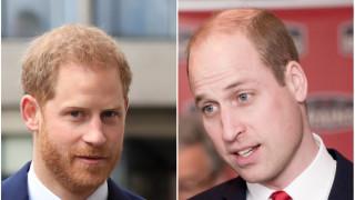 Говорят ли си Уилям и Хари