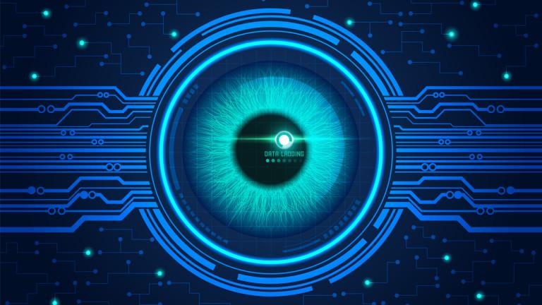 Шведски и китайски хакери атакуваха системата за преброяване