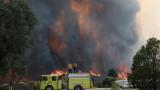 Калифорния иска федерална помощ заради пожарите