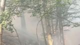 Продължава гасенето на пожара над село Югово