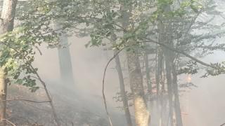 Локализирано е по-малкото огнище на пожара край родопското село Югово