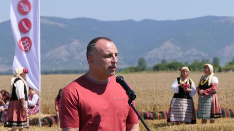 Над 88% от посевите с пшеница са в добро и