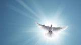 Отбелязваме Световния ден на мира