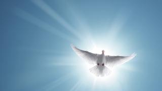 Православната църква празнува Свети Дух