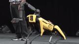 Spot, Boston Dynamics и кучето-робот, което можем да си купим