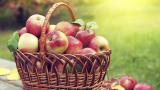 Ябълките могат да намалят риска от рак