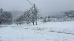 Трети ден кюстендилско село е без ток заради снега