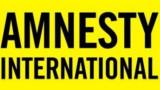 """""""Амнести"""": България и Гърция длъжни да осигурят достъп на мигрантите"""