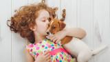Децата, психичното здраве, домашните любимци и как им помагат в развитието