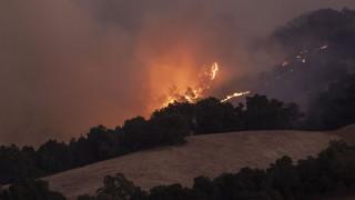 Няма пострадали български граждани при пожара в Калифорния
