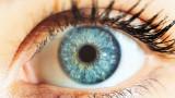 Силата на това да погледнеш непознат в очите и каква е тайната на човешкия поглед