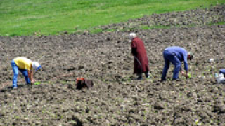 С продажба на земи компенсираме дупката в бюджета за земеделие