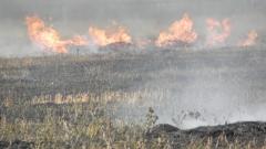 Екоинспекторите в Пловдив разбрали от медии за пожар и проверили за замърсяване