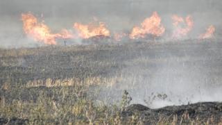 Европа е изправена пред все по-големи рискове от горски пожари