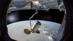 Земни организми оцеляват от външната страна на МКС