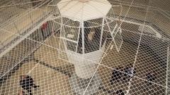 Огнище на коронавирус в женския затвор в Сливен