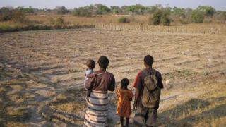 ООН обвинява човешката дейност за глобалното затопляне