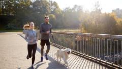 Как да тичаме безопасно с кучето