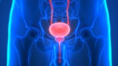 Ноември срещу рака на простатата
