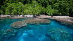 Океанът погълна пет от Соломоновите острови