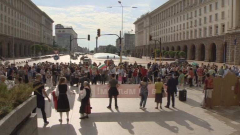 Природозащитници излязоха тази вечер в центъра на София на протест