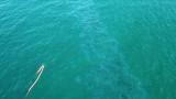 Нови 500 м. бонови заграждения поставиха в морето край Созопол