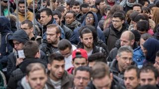 Белгийските власти искат мигрантите да подписват декларация, че приемат ценностите на ЕС