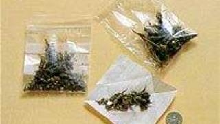 Иззеха пакетчета с канабис от младежи в Сливен