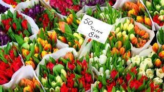 Туристите жертва на измамна схема на известния пазар за цветя в Амстердам