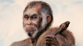 """В Индонезия откриха останки от трима """"хобити"""""""