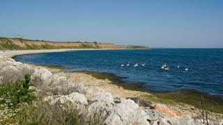 """Асоциация """"Българско Черноморие"""" готова да """"разминира"""" защитените територии"""
