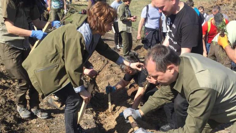 Залесяват опустошената от пожар местност край Стара Кресна