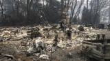 81 души са вече жертвите на огнения ад в Калифорния
