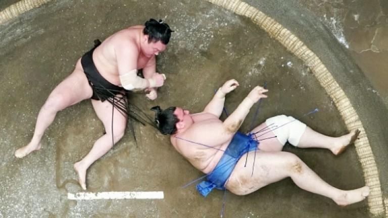 Първи успех за Аоияма на турнира по сумо в Токио