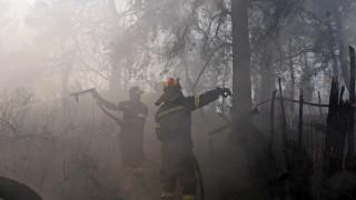 Над 100 пожарникари и доброволци гасят пожар в околностите на Атина
