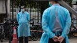 Китай изправен пред свинска криза