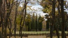 """Прокуратурата във Варна проверява отнемане с ЧСИ на Ботаническата градина към СУ """"Св. Климент Охридски"""""""