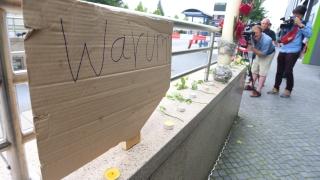 """""""Алтернатива за Германия"""" увеличава подкрепата си след атаките"""