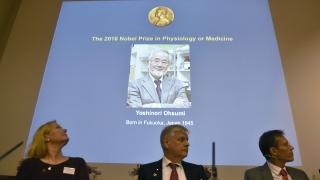 Японец печели Нобела за медицина за 2016 г.