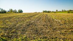 За 5 години селскостопанската земя е намаляла с 2 милиона декара