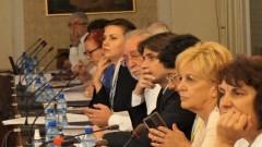 Икономическият и социален съвет реши да критикува здравната политика в епидемията