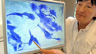 След втората проба: Няма бактерия-убиец в България