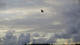 Неспазване на правилата може да е довело до смъртта на US-парашутиста в Чешнегирово